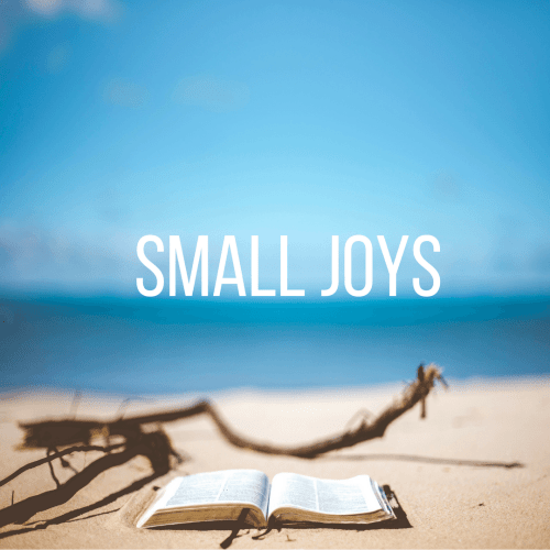 Small Joys: Volume 11 | Fairly Southern