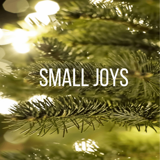 Small Joys: Cultivating gratitude for all the small things in life. | Fairly Southern
