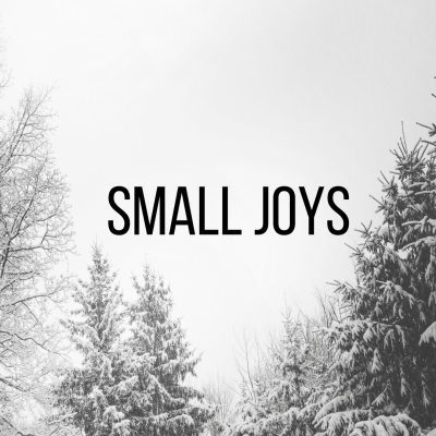 Small Joys: Volume 15