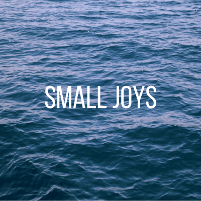 Small Joys: Volume 20
