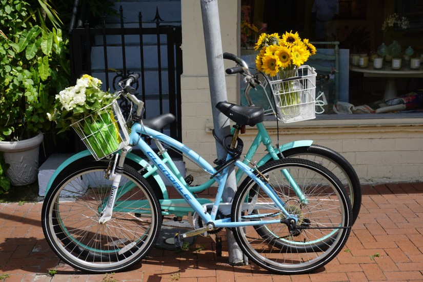 Bicycles in Key West, Florida  |  Fairly Southern