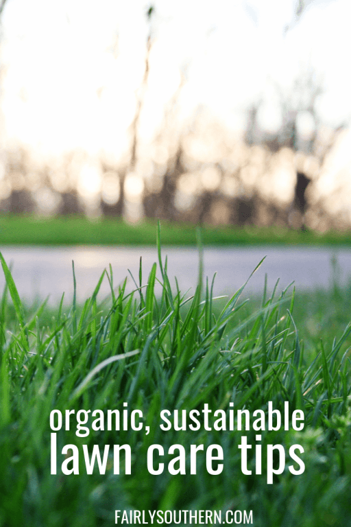 organic & sustainable lawn care tips | Fairly Southern