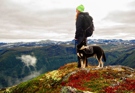 Take a hike: exercise for you and your dog