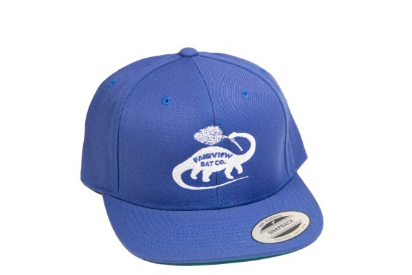 Blue and White Snapback