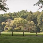Mallard Creek