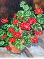 Paul Brent completed painting from potted geraniums at his home in Seaside.