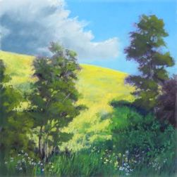 """12""""x12"""" plein air pastel painting of canola fields, cumulous clouds, trees, wildflowers in Banks, Oregon"""