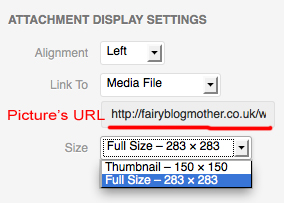 Attachment Display Settings