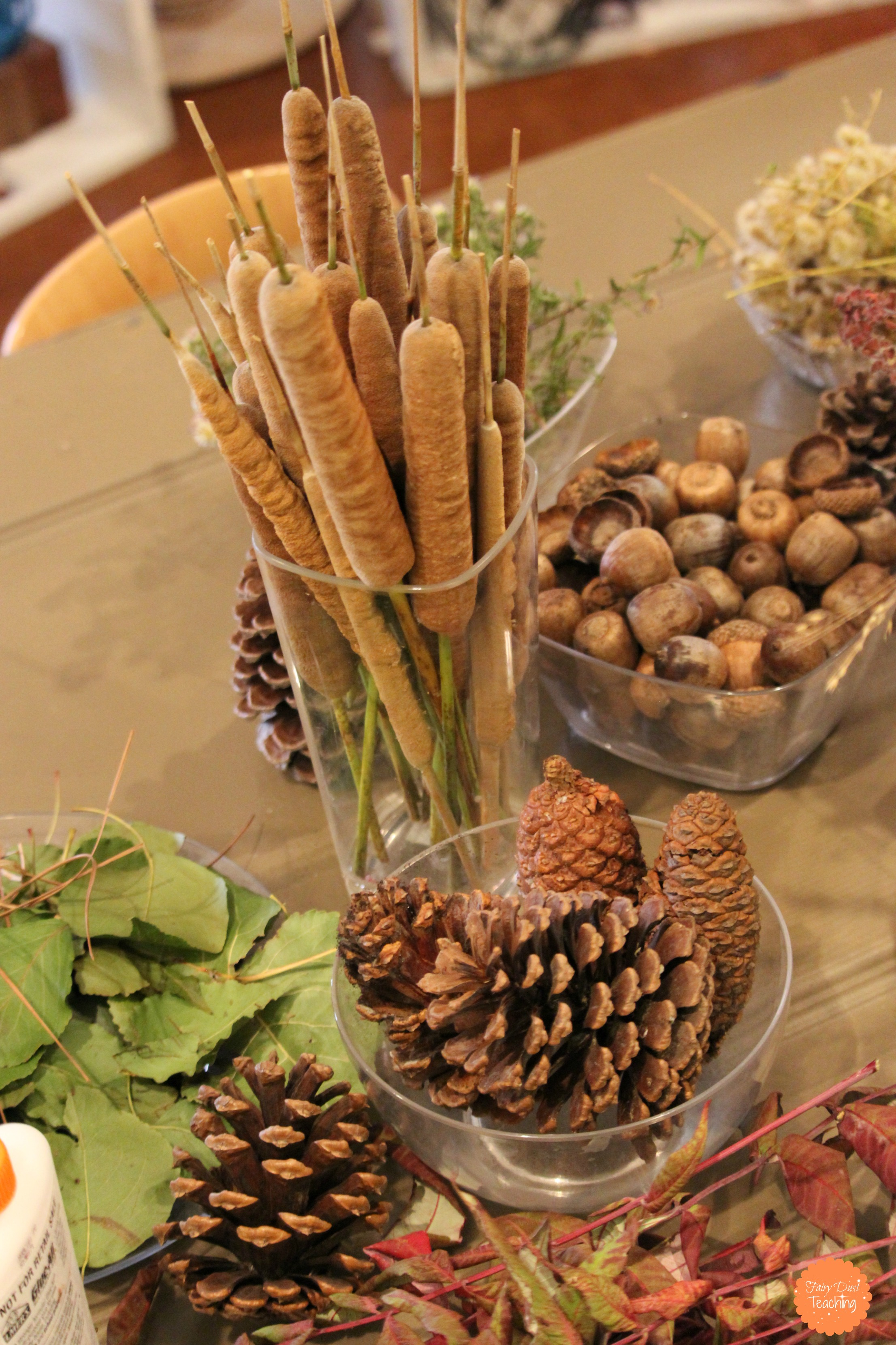 12 Ideas for Storing Loose Parts  Fairy Dust Teaching