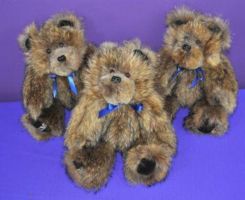 LevineF bears