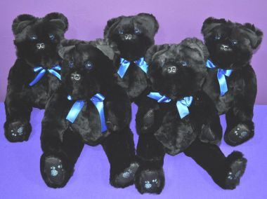 MonahanB bears