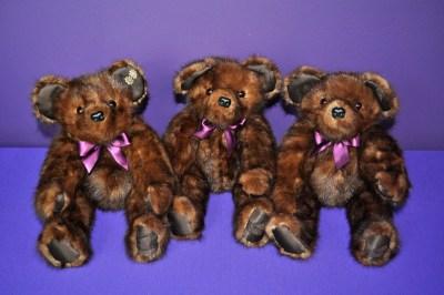 SchaecherI bears2