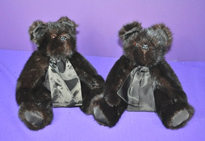 SuttonK bears