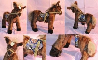 SA Horse Pics01web