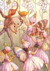 Pixies and Fairies