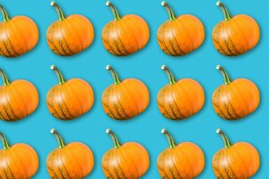 Read more about the article What to Do With Seasonal Pumpkins: 21 Fun, Creative Ideas