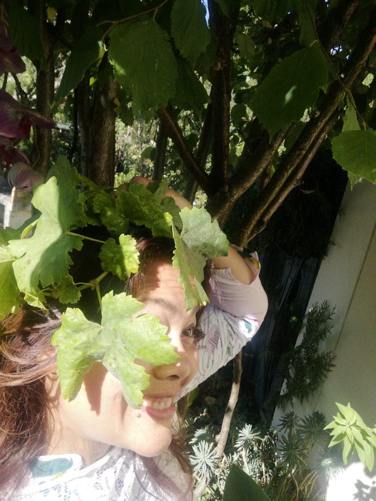 cueillette de feuille de vigne
