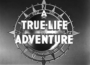 Illustration-True-Life-Adventures-01