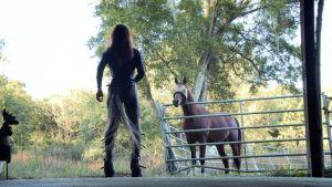 833607-etre-cheval