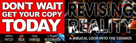 revising-reality-banner