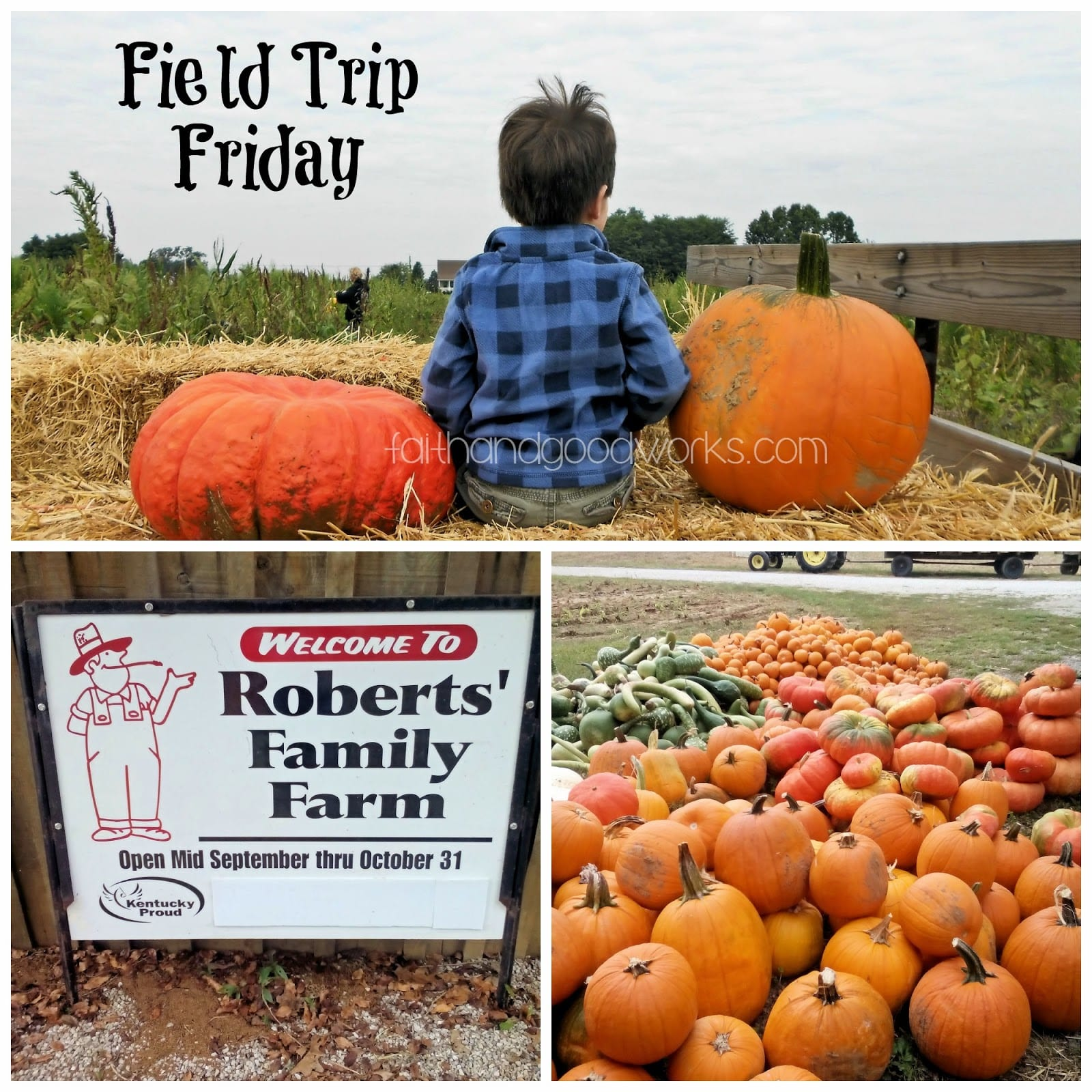 Field Trip Friday: Robert's Family Farm