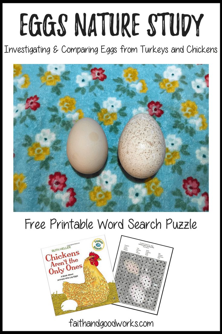 Eggs Nature Study Free Printable Word Search {The Nature Book Club Link Up}