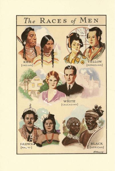races of men