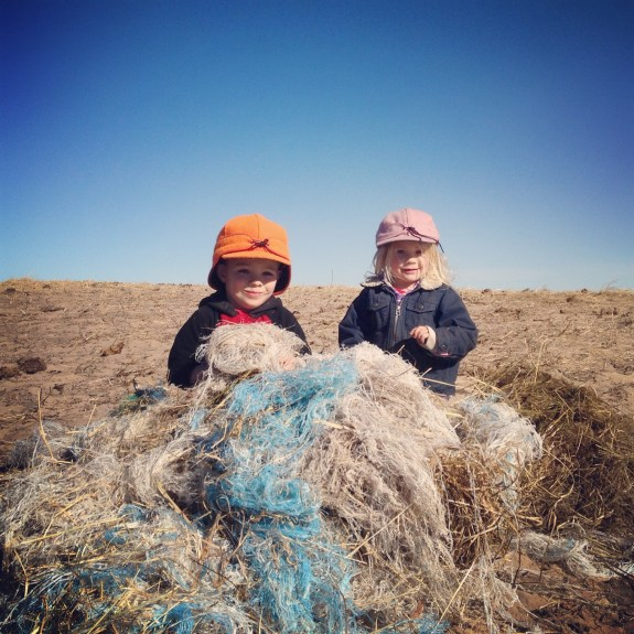 Raising Kids & Conventional Beef