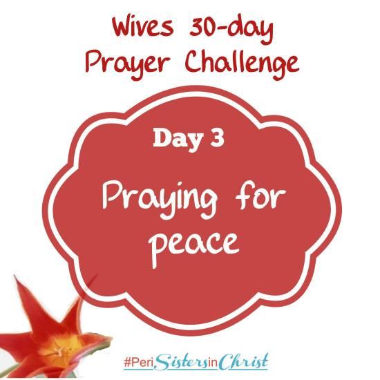 Marriage Prayer Challenge Day 3