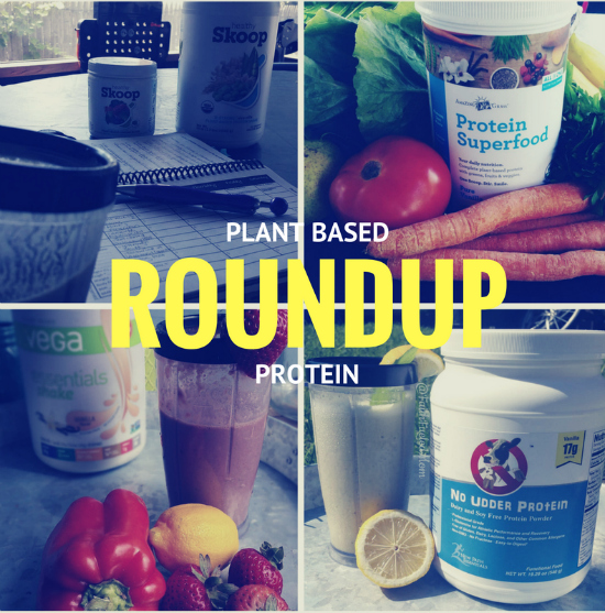 plant-basedproteinroundup