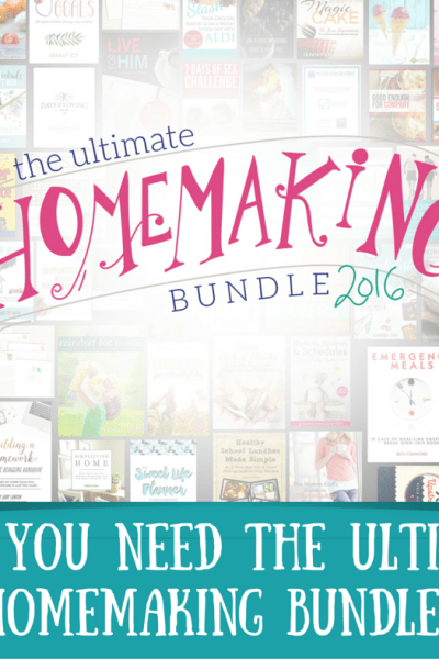 Why You Need this year's Ultimate Bundle // (YES, you do!)