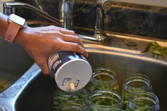 Canning Fresh Green Beans
