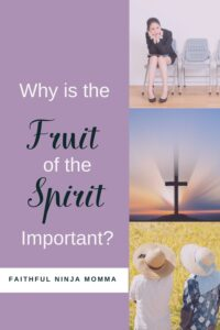 Why is the Fruit of the Spirit Important