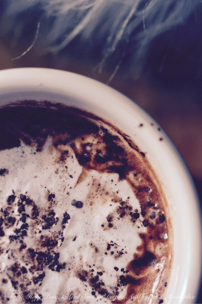Sea Salted Hot Chocolate | Faith, Hope, Love, and Luck Survive Despite a Whiskered Accomplice