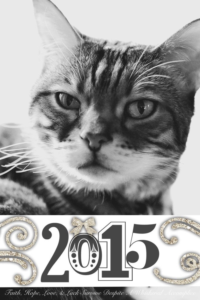 2015 Brenna | Faith, Hope, Love, and Luck Survive Despite a Whiskered Accomplice