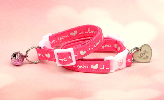 Valentine's Day Cat Collar | Faith, Hope, Love, and Luck Survive Despite a Whiskered Accomplice