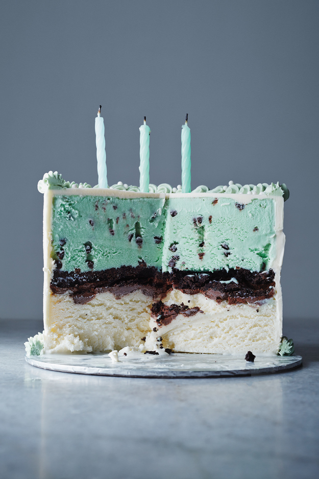 Classic Ice Cream Cake | Faith, Hope, Love, and Luck Survive Despite a Whiskered Accomplice