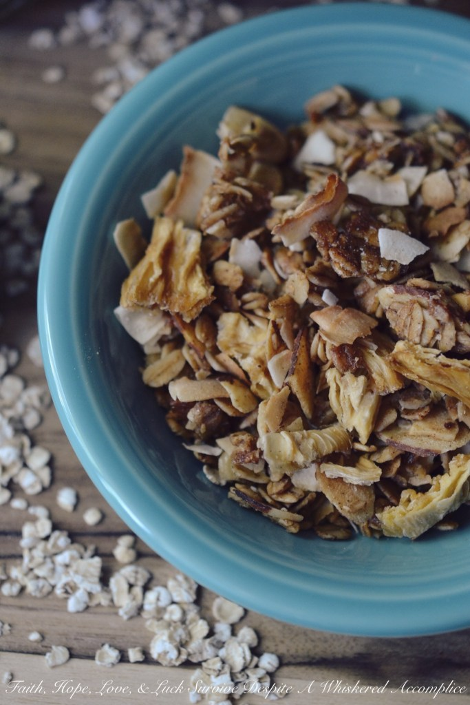 Take Me to the Islands Homemade Granola | Faith, Hope, Love, and Luck Survive Despite a Whiskered Accomplice