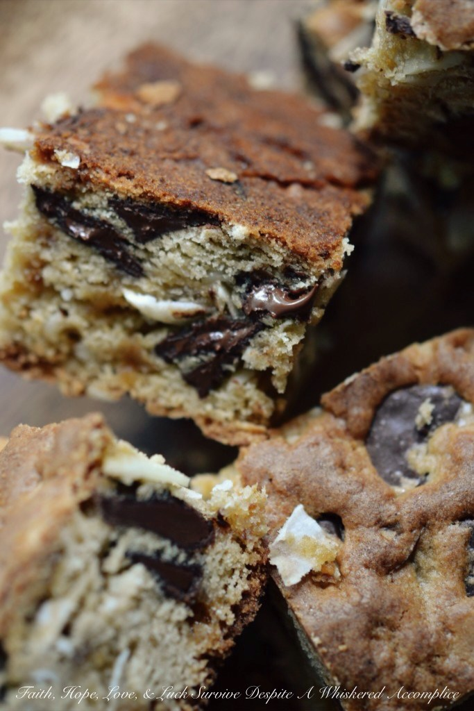 DT's Camping Cookie Bars | Faith, Hope, Love, and Luck Survive Despite a Whiskered Accomplice