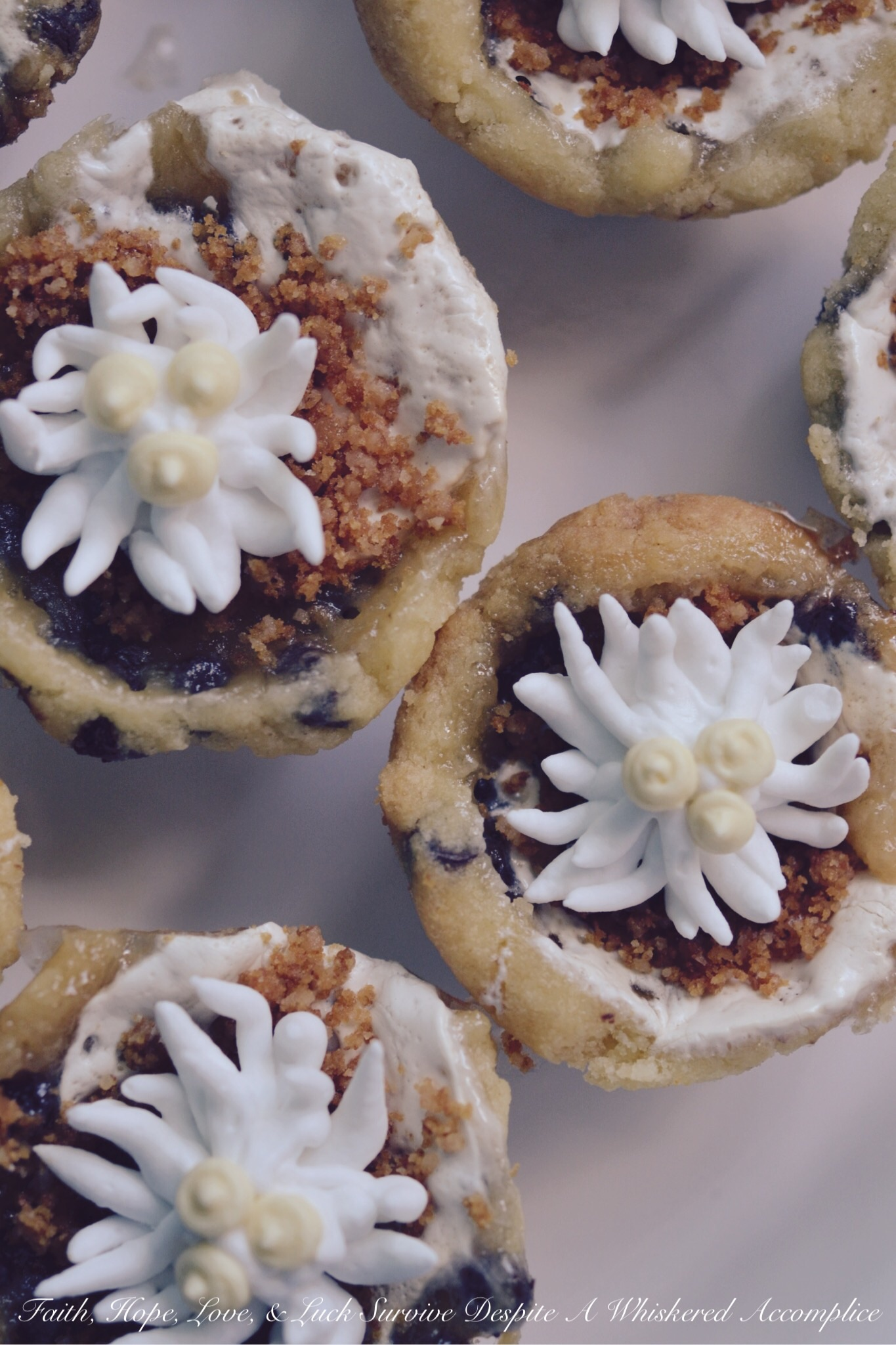 Chocolate Chip Shortbread Cookie Cups
