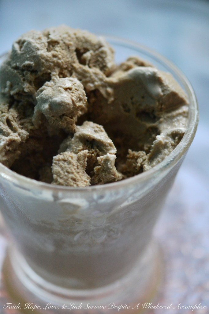 Root Beer Ice Cream | Faith, Hope, Love, and Luck Survive Despite a Whiskered Accomplice