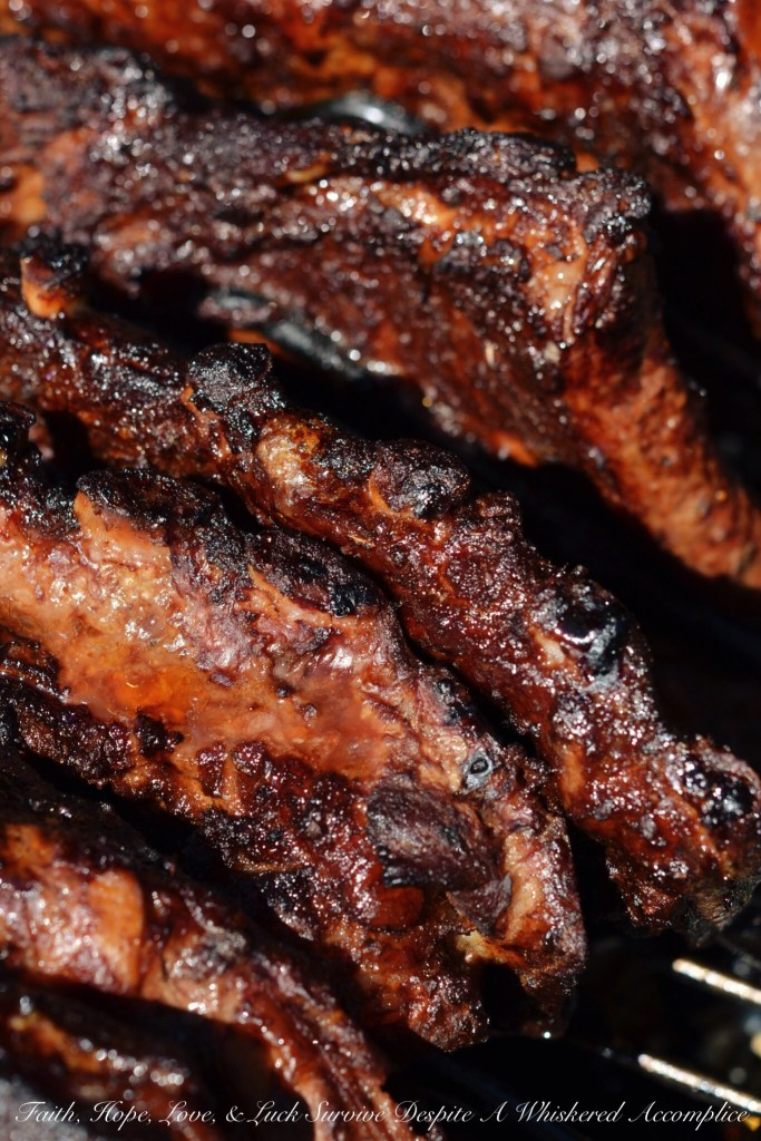 Dry Rubbed BBQ Ribs | Faith, Hope, Love, and Luck Survive Despite a Whiskered Accomplice