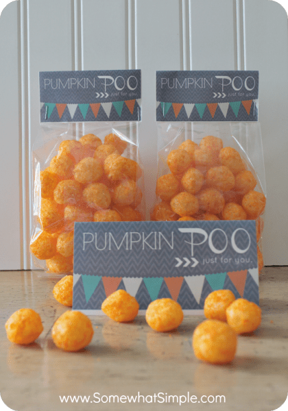 Pumpkin Poo | Faith, Hope, Love, and Luck Survive Despite a Whiskered Accomplice