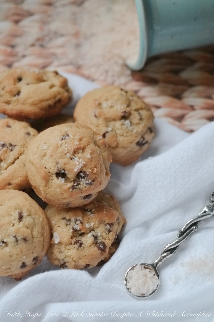 Mini Chocolate Chip Cookies with Sea Salt | Faith, Hope, Love, and Luck Survive Despite a Whiskered Accomplice
