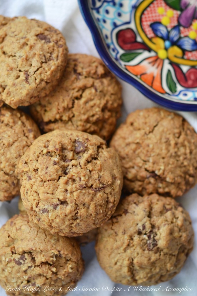Fat Mexican Reindeer Oatmeal Cookies  Faith, Hope, Love, and Luck Survive Despite a Whiskered Accomplice