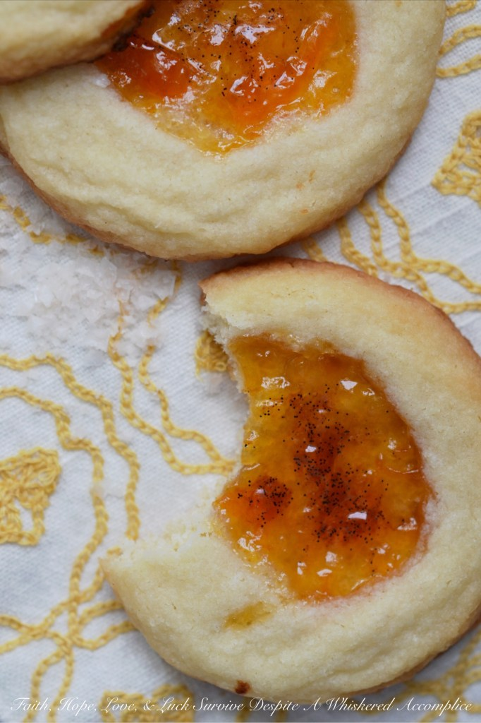Salty Vanilla Bean Apricot Cookies   Faith, Hope, Love, and Luck Survive Despite a Whiskered Accomplice