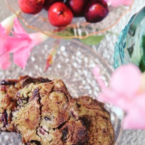 Instagram - Moist Cherry Chocolate Cake Bars | Faith, Hope, Love, and Luck Survive Despite a Whiskered Accomplice