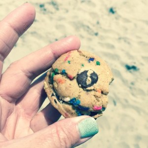 Instagram - Summer Beach Cookies | Faith, Hope, Love, and Luck Survive Despite a Whiskered Accomplice