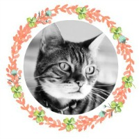 Brenna Wreath Profile 200x200 | Faith, Hope, Love, and Luck Survive Despite a Whiskered Accomplice