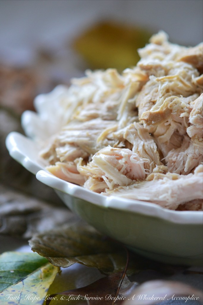 how to cook poached chicken breast